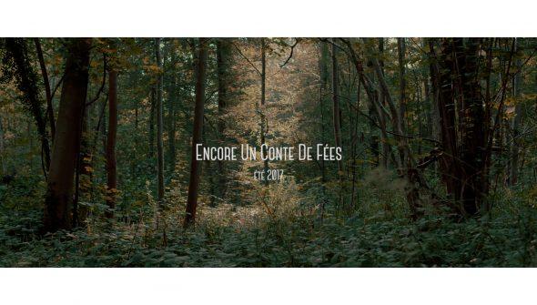 Miniature_Encore_Un_Conte_De_Fées