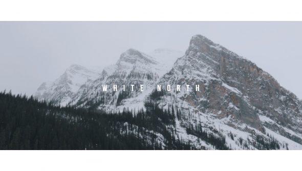 Miniature_White_North